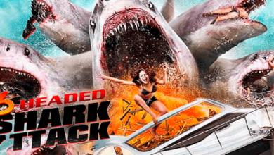 Photo of El ataque del tiburón de 6 cabezas (2018) HD 1080p Español Latino Excelente