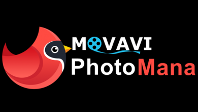 Photo of Movavi Photo Manager v2.0.0, Administra y edita tu colección de fotos