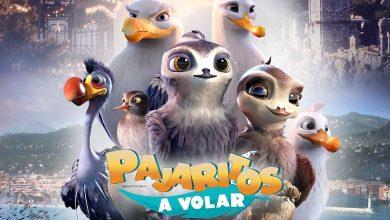 Photo of Pajaritos a volar (2019) Full HD 1080p Español Latino Excelente