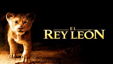Photo of El Rey León (2019) Full HD 1080p Español Latino Excelente